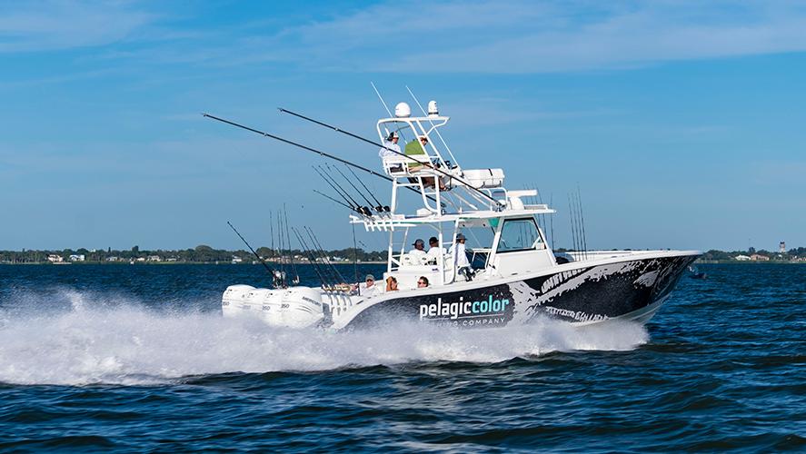 Pelagic Color Fishing Company image
